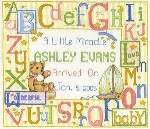A Little Miracle Birth Sampler - Cross Stitch