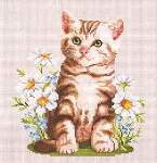 Summer Kitten - Cross Stitch Pattern