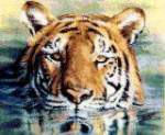 Water Tiger - Cross Stitch Pattern