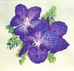 Orchids for Cole - Cross Stitch Pattern