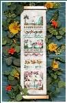 Tropical Garden Sampler - Cross Stitch